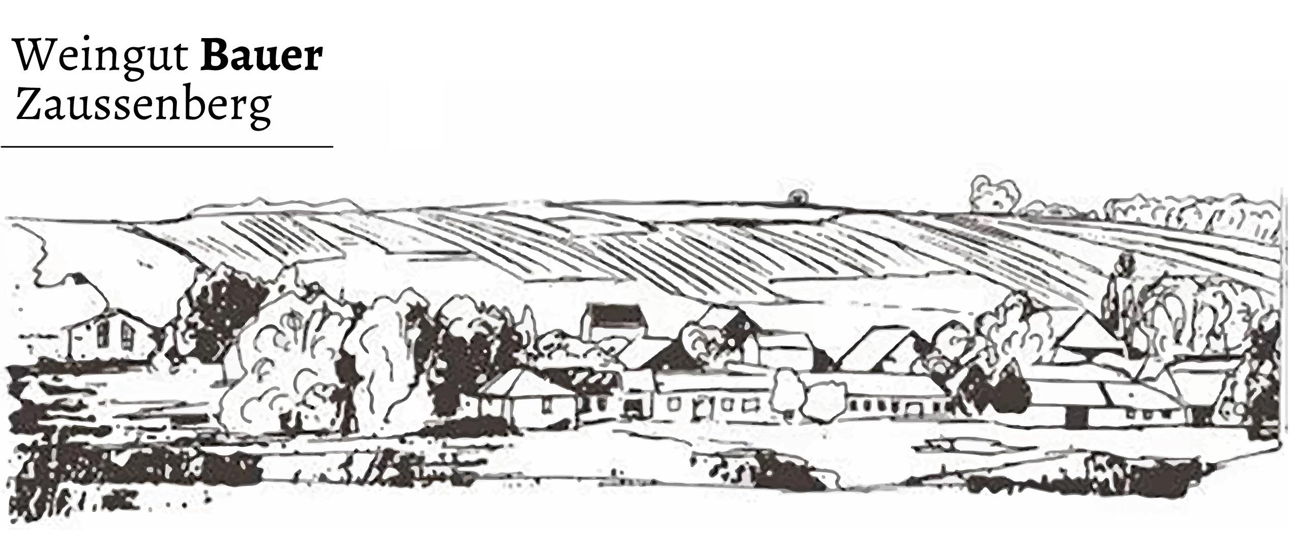 Weingut Bauer in Zaussenberg